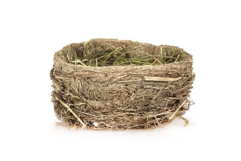 Het nest van de lege die vogel op een wit wordt geïsoleerd stock foto's