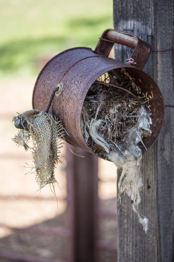 Het nest van de vogel in metaal kan stock afbeelding