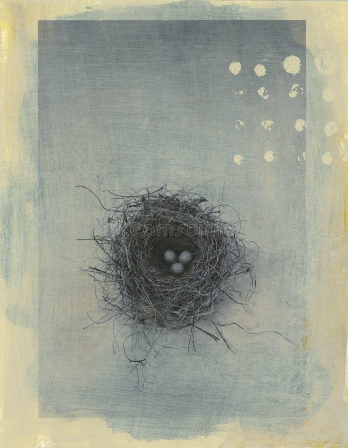 Het Nest van mussen
