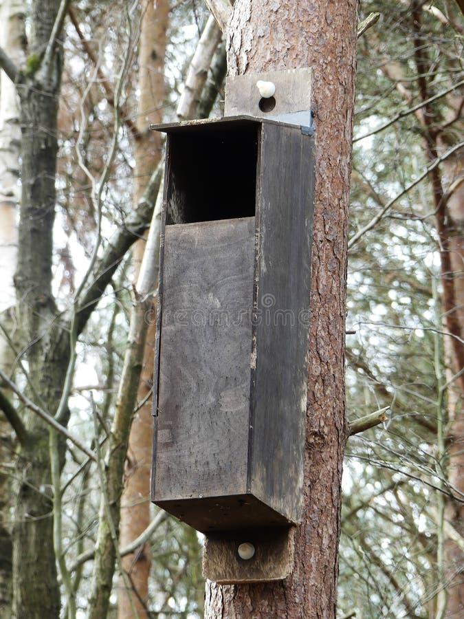 Het nestelen doos voor uilen in bos stock foto