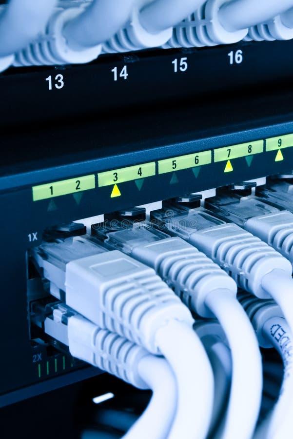 Het netwerkkabels van de computer stock foto's