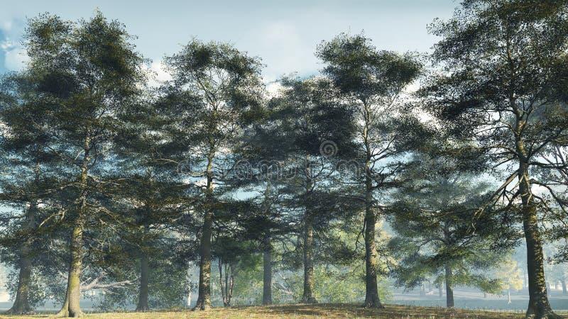 Het nevelige Bos van de As van de Ochtend vector illustratie