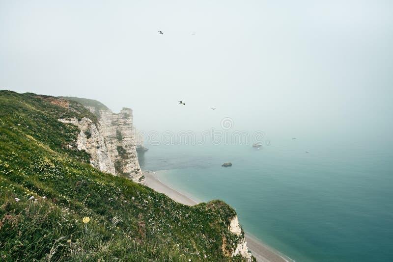 Het nevelige landschap van de ochtendmist op de klippen van Etretat Natuurlijke witte krijtrotsen in Etretat, Normandië, Frankrij stock afbeelding