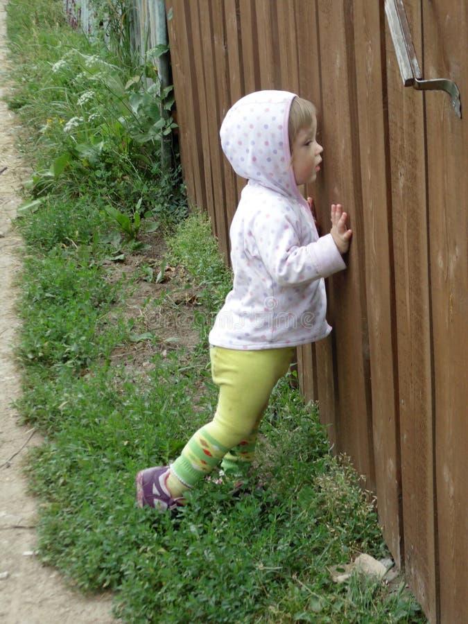 Het nieuwsgierige meisje gluurt royalty-vrije stock foto
