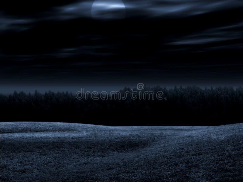 Het nightly landschap vector illustratie