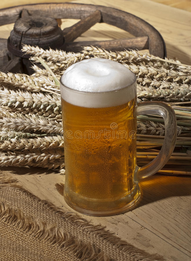Het nog-leven met bier royalty-vrije stock afbeelding