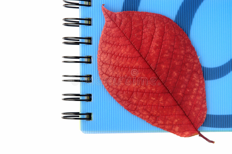 Download Het nog-leven op kantoor? stock foto. Afbeelding bestaande uit life - 287224