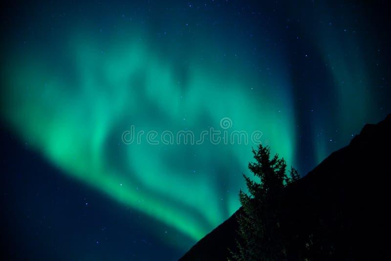 Het noordelijke Toenemen van Lichten stock afbeelding