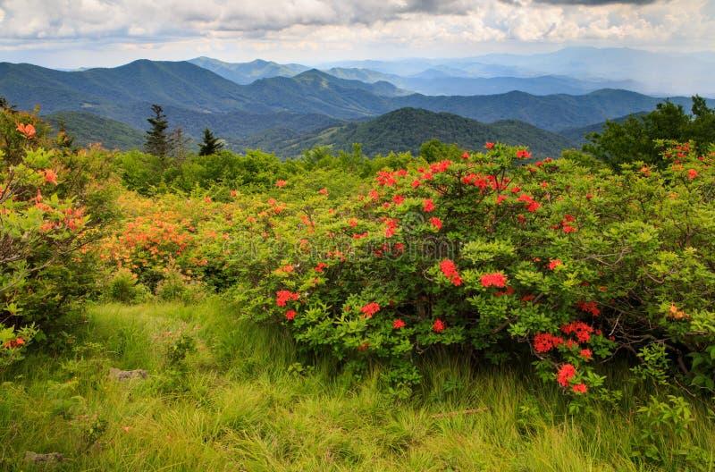 Het noorden Carolina Mountain Background royalty-vrije stock foto's