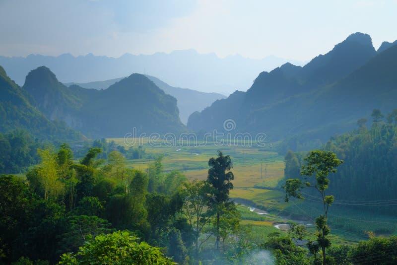 Het noorden Vietnamese die vallei met padievelden en karst bergen door mist in Ha Giang/Dong Van-gebied worden behandeld stock afbeeldingen