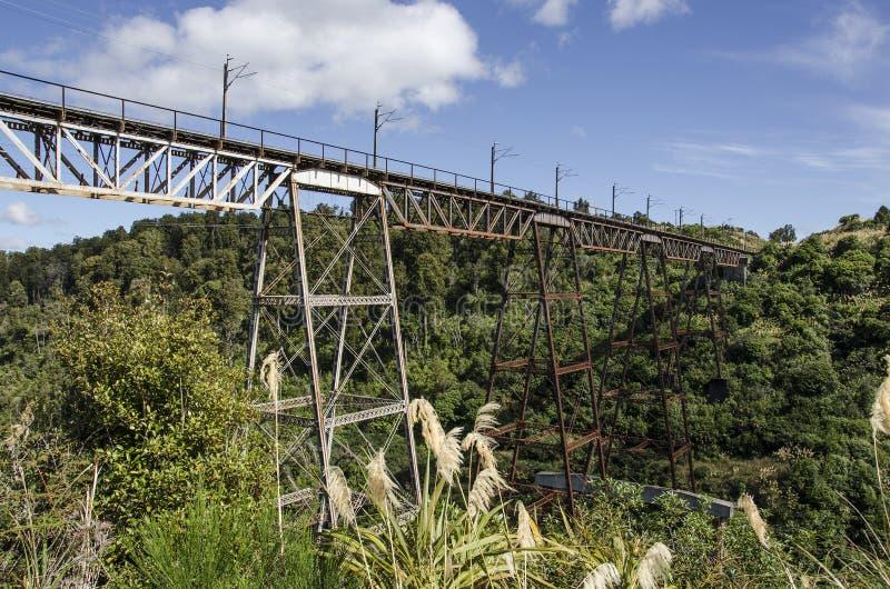 Het Noordeneiland Nieuw Zeeland van het Makatoteviaduct royalty-vrije stock fotografie