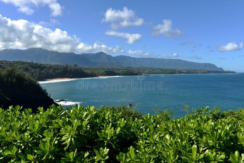 Het noordenkust - Kauai stock fotografie