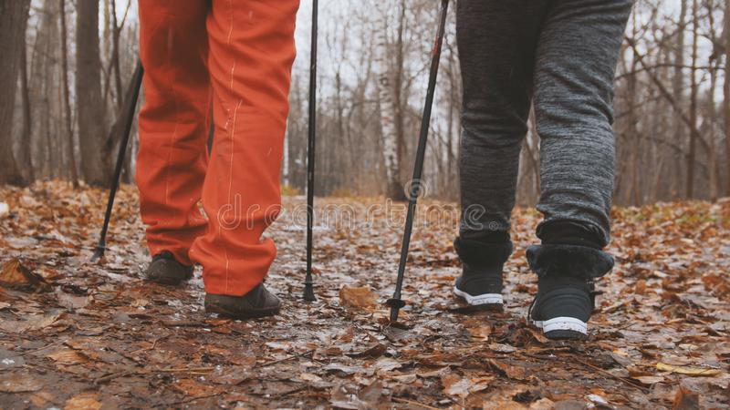 Het noordse dicht naar boven gaan in de herfstpark - twee bejaarde hogere dames hebben opleiding openlucht - benen royalty-vrije stock afbeelding