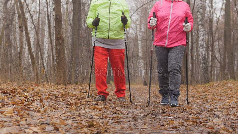 Het noordse lopen voor bejaarden openlucht - twee gelukkige hogere dames hebben opleiding openlucht stock fotografie