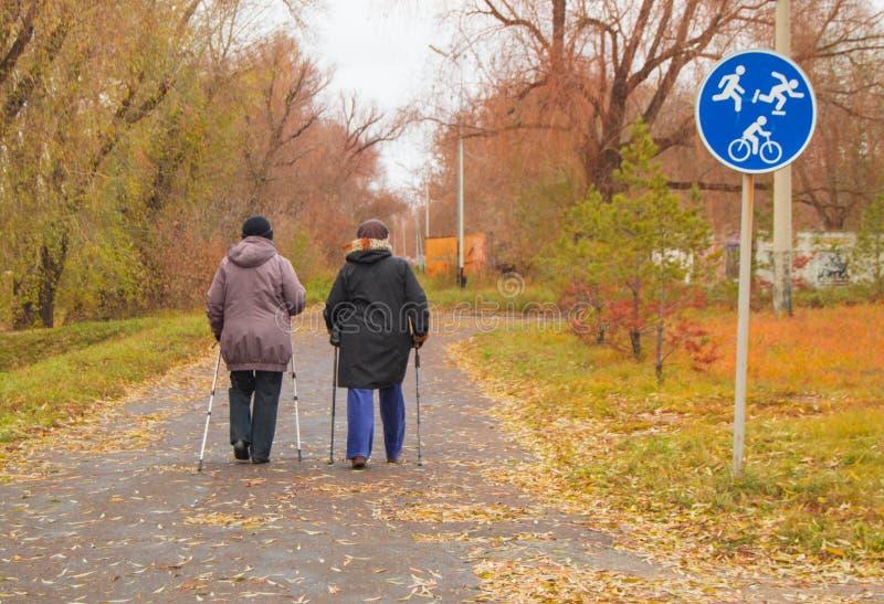 Het noordse lopen voor twee bejaarden in openlucht in de herfstpark stock foto
