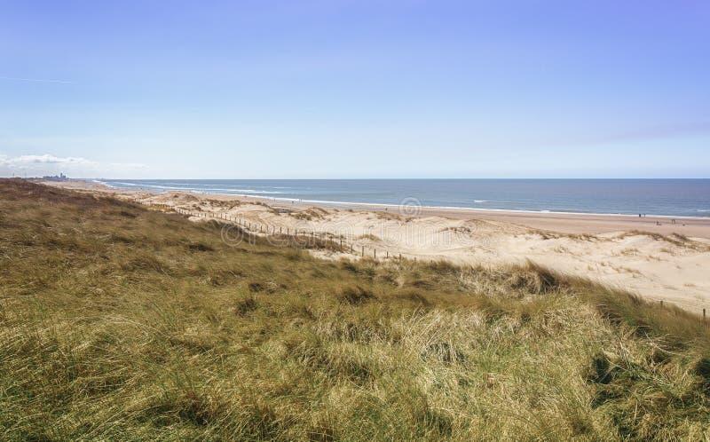 Het Noordzeestrand dichtbij Bloemendaal in Nederland royalty-vrije stock foto's