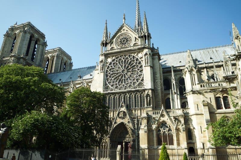Het Notre-Dame de Paris van de kathedraal stock afbeelding