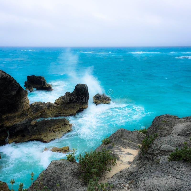 Het oceaanleven stock afbeelding