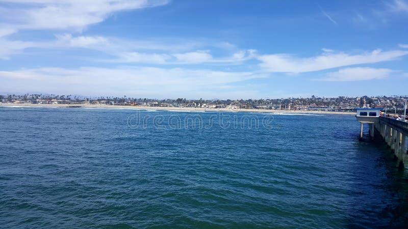 Het oceaanleven stock fotografie