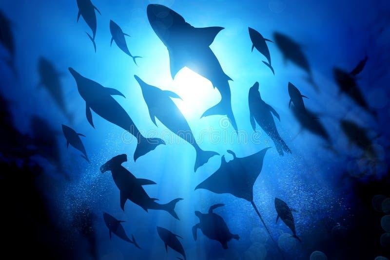Het oceaanleven onder de Golven stock foto's