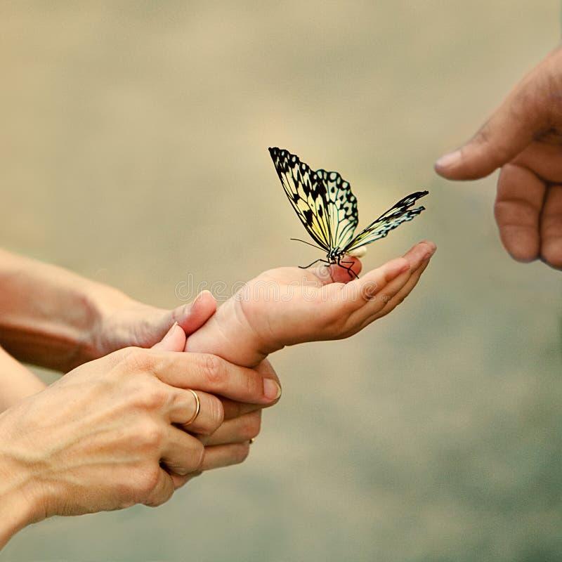 Het ogenblik van Familiy met vlinder royalty-vrije stock foto