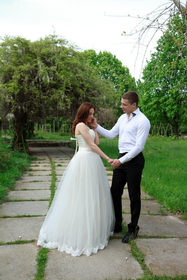 Het omhelzen van huwelijkspaar stock foto's