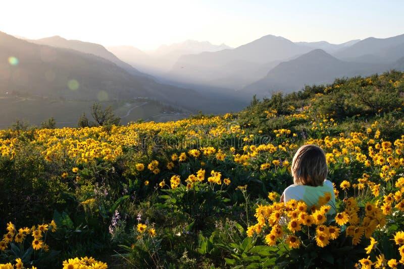 Het onbezorgde vrouw liggen op weide met zon bloeit het genieten van van zonsopgang over bergen en het ontspannen royalty-vrije stock foto's