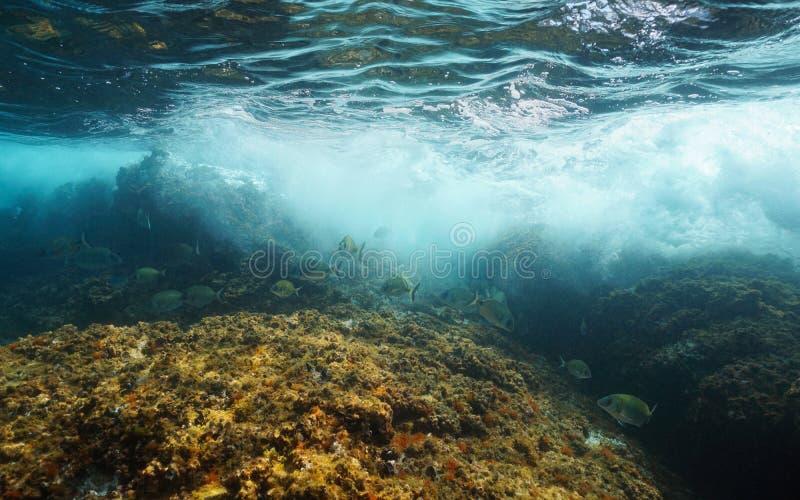 Het onderwatergolf breken met vissenmiddellandse-zeegebied royalty-vrije stock fotografie