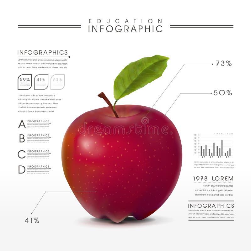 Het onderwijs infographic met dichte omhooggaand bekijkt realistische appel vector illustratie
