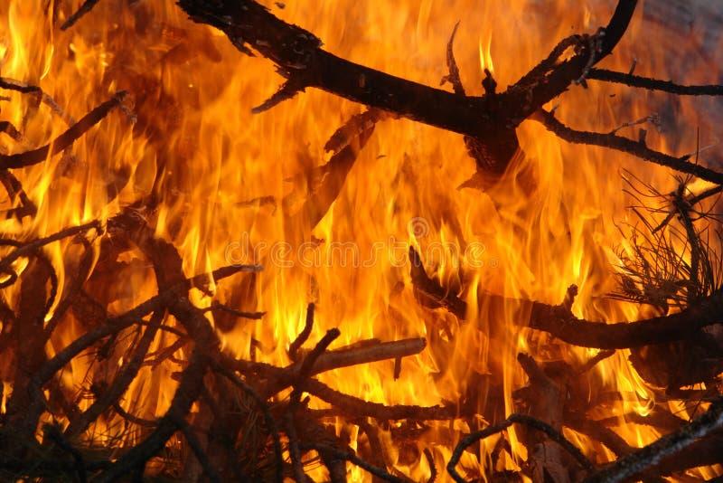 Het onderzoeken van een brand stock afbeelding