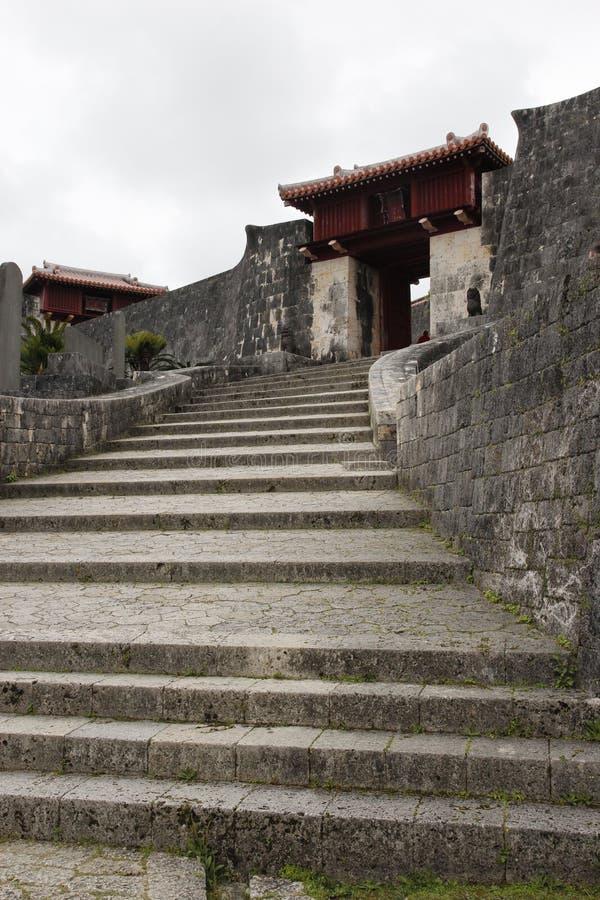 Het onderzoeken van Okinawa royalty-vrije stock afbeeldingen