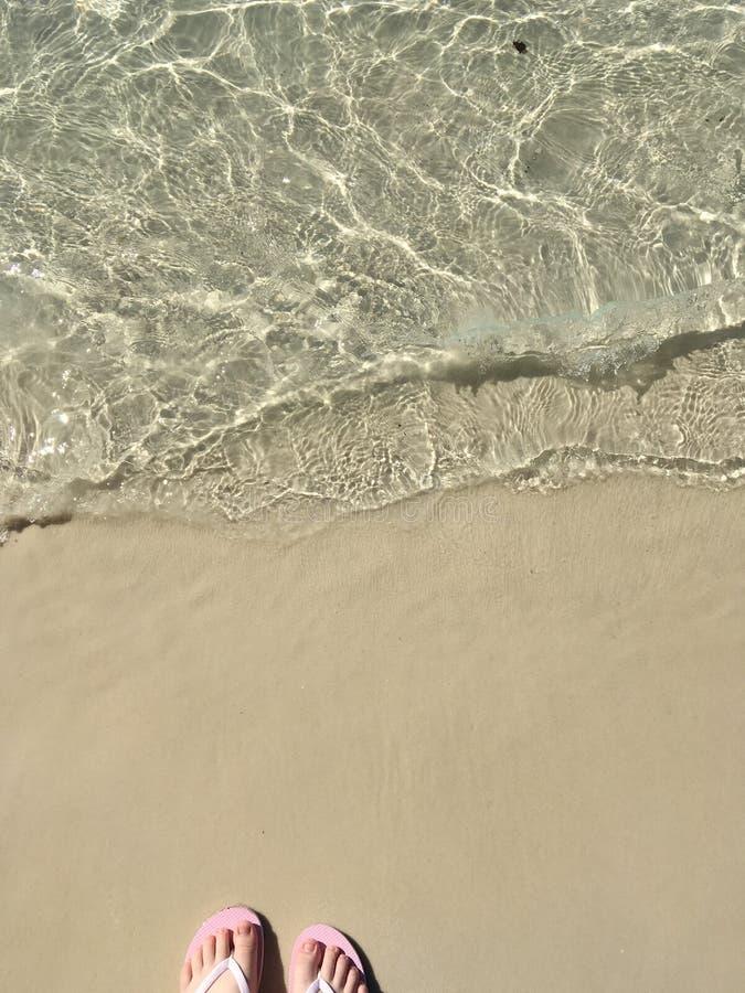 Het onderzoeken van Whitehaven-Strand, Australië royalty-vrije stock foto's
