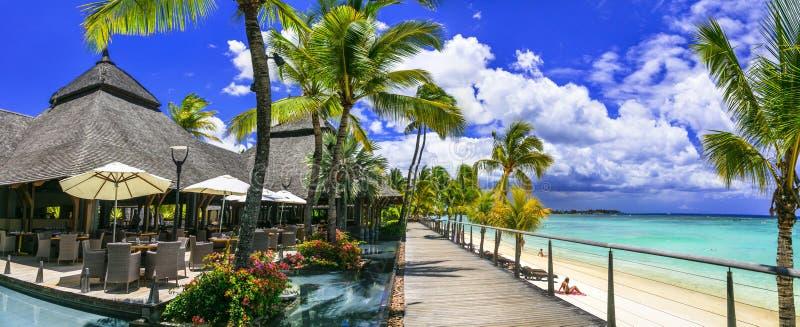 Het ontspannen bar in palmschaduw en bnear pool het strand Het tropische eiland van paradijsmauritius stock foto's