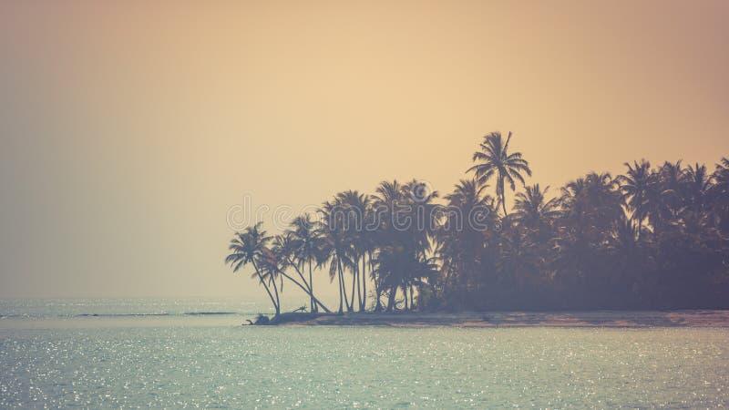 Het ontspannen silhouetten van palmen en verbazende hemel op zonsondergang bij tropisch eiland in Indische Oceaan stock afbeeldingen