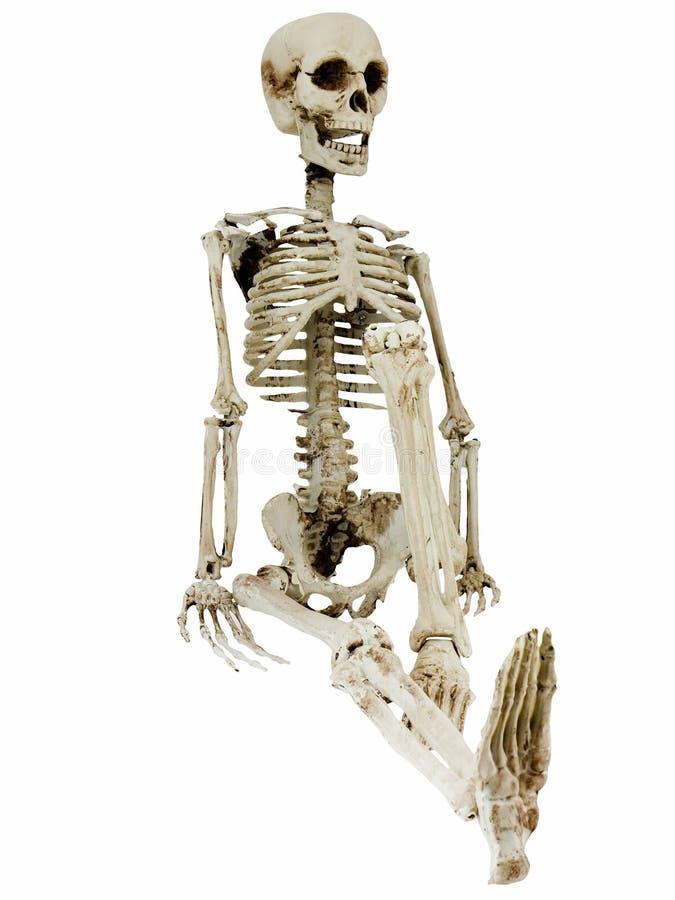Het ontspannen Skelet royalty-vrije stock foto's