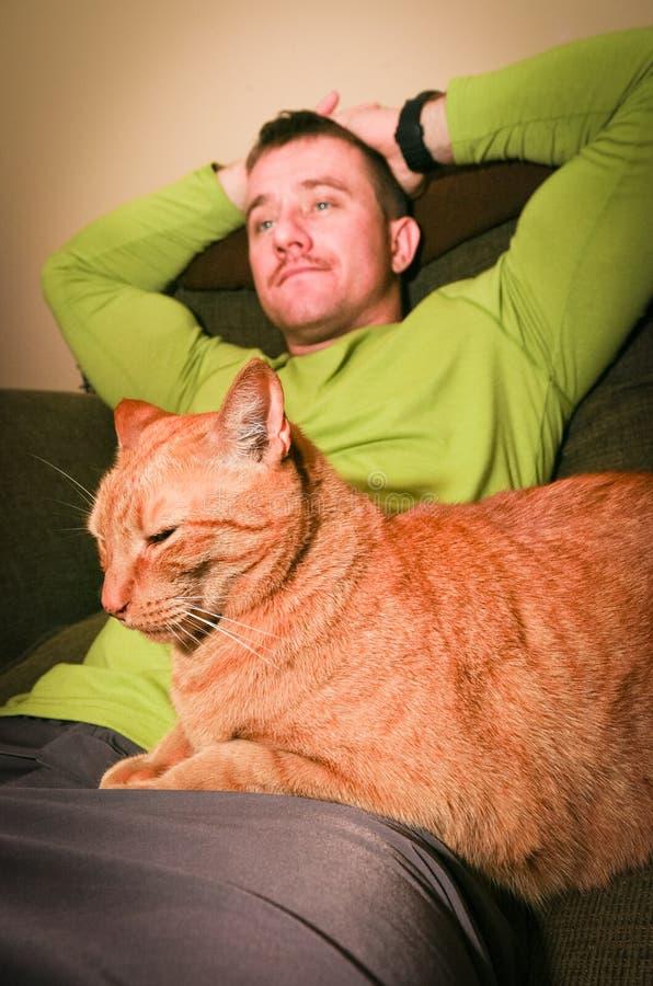 Het Ontspannen van de kat en van de Mens stock fotografie