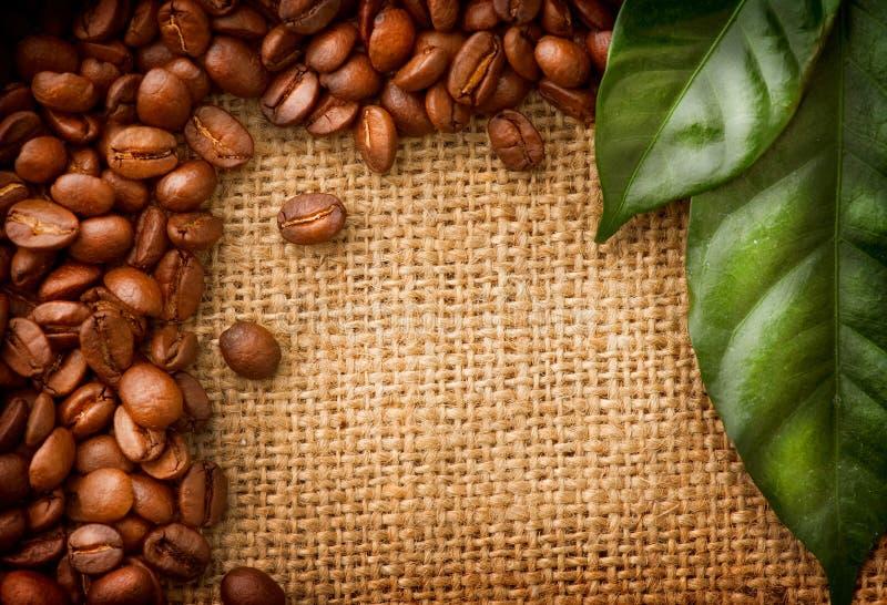 Het ontwerp van de Grens van de koffie royalty-vrije stock fotografie