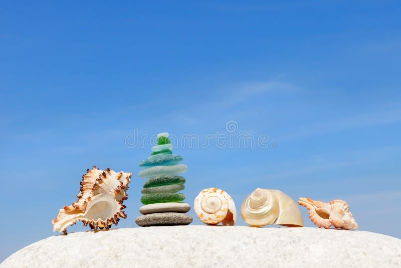 Het ontwerp van exotische shells op de achtergrond van de zomer, blauwe hemel Het concept een strandvakantie door het overzees stock fotografie