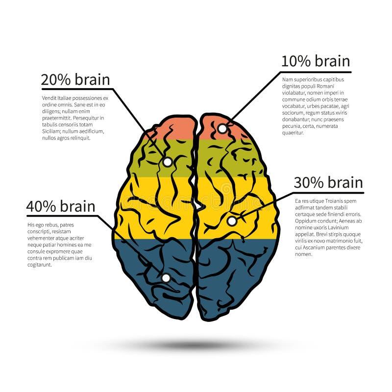 Het ontwerp van herseneninfographics Het malplaatje van het ontwerp stock illustratie