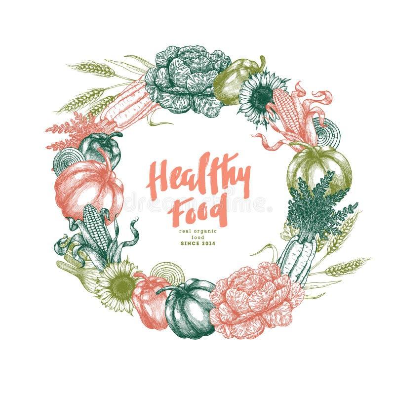 Het ontwerpmalplaatje van de verse groentenkroon Handsketched uitstekende groenten De kunstillustratie van de lijn Vector illustr royalty-vrije illustratie