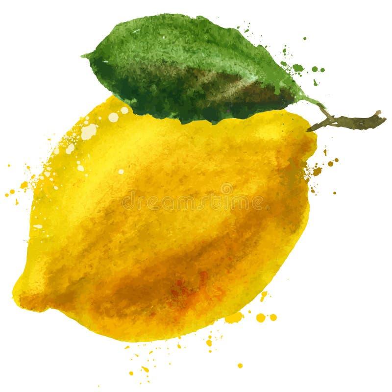 Het ontwerpmalplaatje van het citroen vectorembleem r vector illustratie