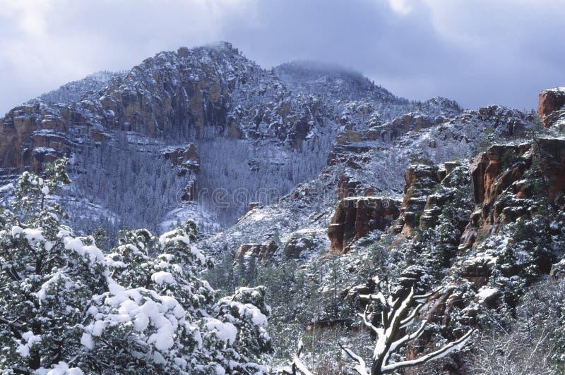Het onweer van de sneeuw over een canion in Sedona, Arizona stock afbeeldingen
