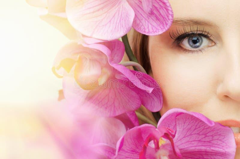 Het oog van de schoonheid stock foto's