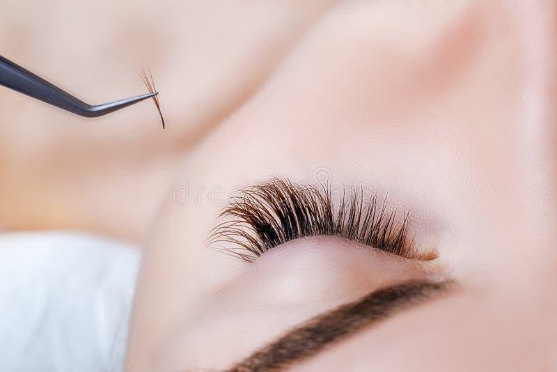Het oog van de vrouw met lange wimpers Wimperuitbreiding De zwepen, sluiten omhoog, geselecteerde nadruk stock foto's