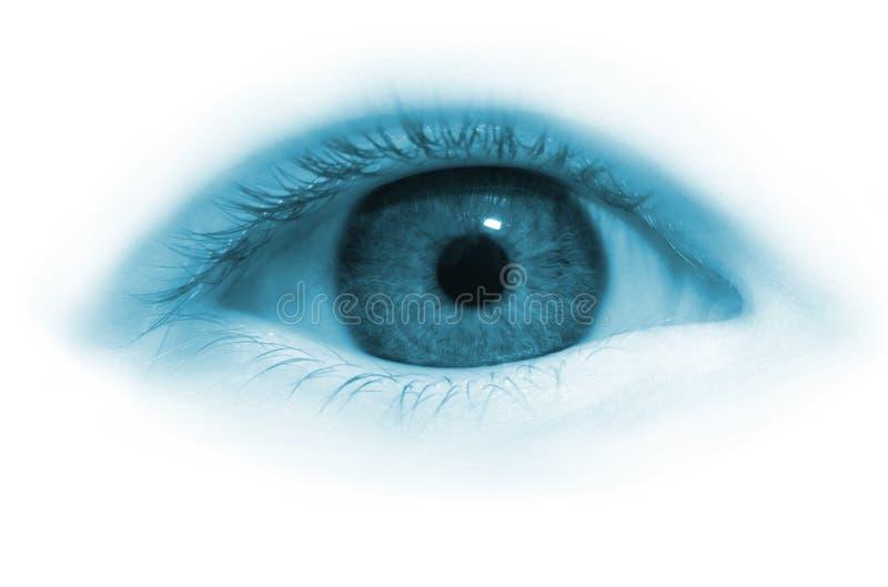 Het oog van het meisje stock foto's