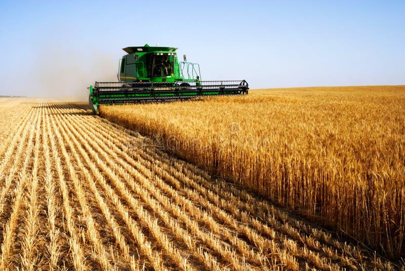 Het oogsten combineert stock foto's