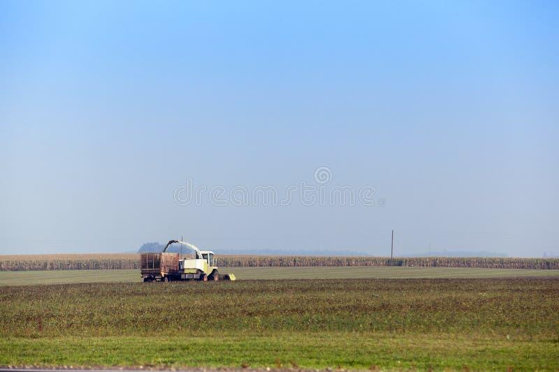 Het oogsten van het graangebied stock foto's