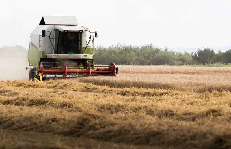 Het oogsten van tarwegebied met combineert stock afbeeldingen
