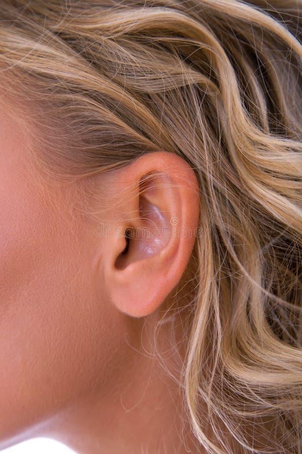 Het oor van de vrouw royalty-vrije stock foto