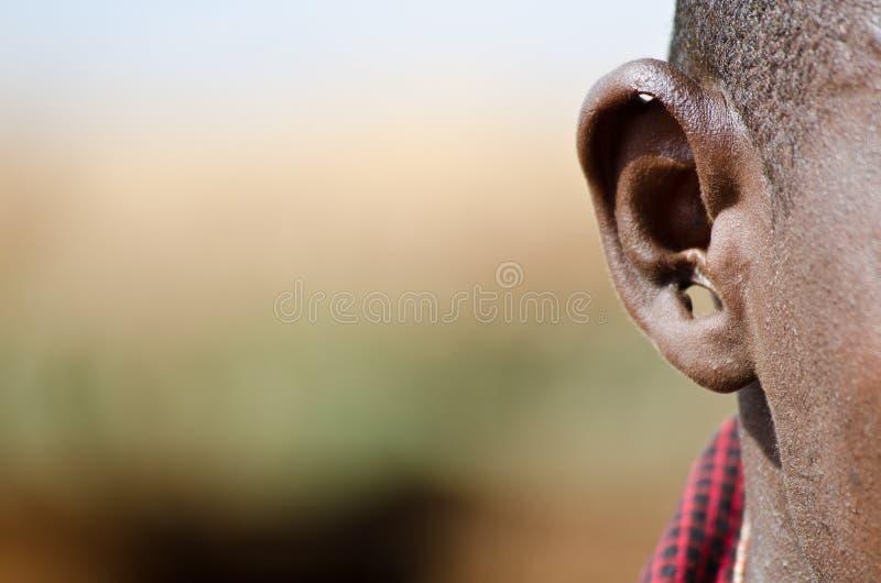Het oor van Masai royalty-vrije stock afbeelding